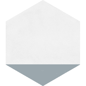 Cement-Tile-Hex.-Clip-Oxford_Original-Mission-Tile_Treniq_0