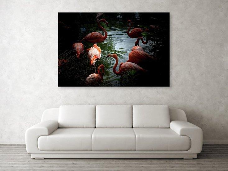 Flamingos   acrylic print eric christopher jackson treniq 2 1533699176504