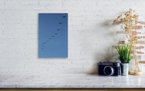 In-Rhythm-|-Acrylic-Print_Eric-Christopher-Jackson_Treniq_0