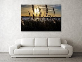 Soft-Wind-|-Acrylic-Print_Eric-Christopher-Jackson_Treniq_0