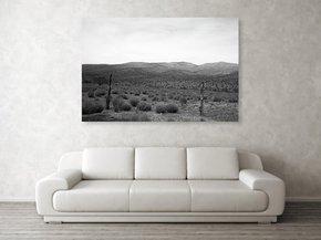 Solitude-|-Acrylic-Print_Eric-Christopher-Jackson_Treniq_0