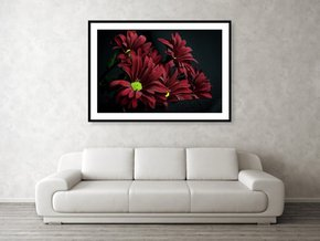 Crimson-Lime-Framed-Art_Eric-Christopher-Jackson_Treniq_0