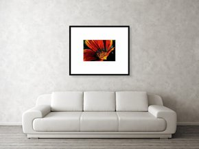 Fall-In-Love-Framed-Art_Eric-Christopher-Jackson_Treniq_0
