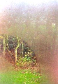 Ethereal-Autumn-Iii_Paola-De-Giovanni_Treniq_0