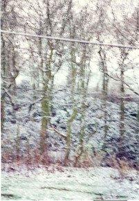 Blurred-Winterscape-Iii_Paola-De-Giovanni_Treniq_0