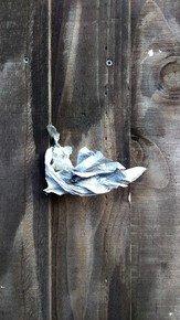 The-Creased-Silver-Wing_Paola-De-Giovanni_Treniq_0