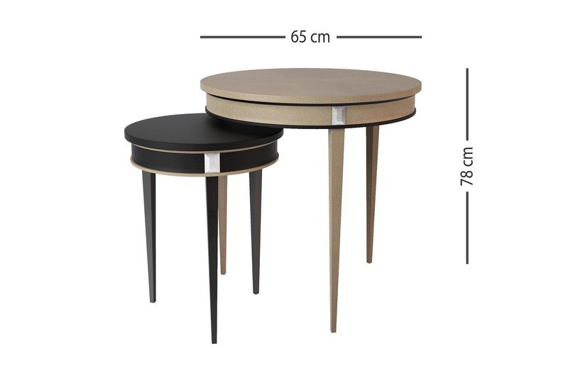Bimi round table mari ianiq treniq 4