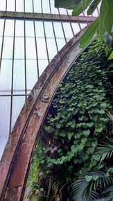 Green-Layers-With-Rusty-Arch_Paola-De-Giovanni_Treniq_0