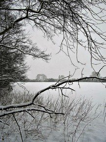 Ethereal-Winter-Iii_Paola-De-Giovanni_Treniq_0