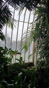 Kew-Patterns-I_Paola-De-Giovanni_Treniq_0