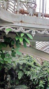 Victorian-Details-With-Rambling-Foliage-Iii_Paola-De-Giovanni_Treniq_0