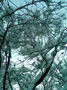 Intricate-Pale-Blue_Paola-De-Giovanni_Treniq_0