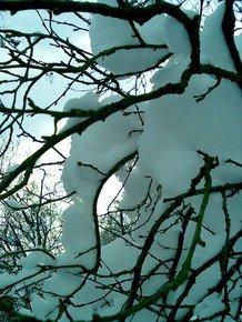 Winter-Contours-Iii_Paola-De-Giovanni_Treniq_0