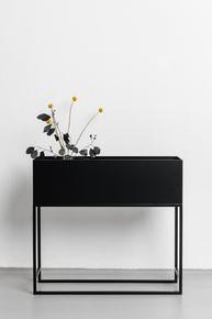 Bloom-Box_Un'common_Treniq_0