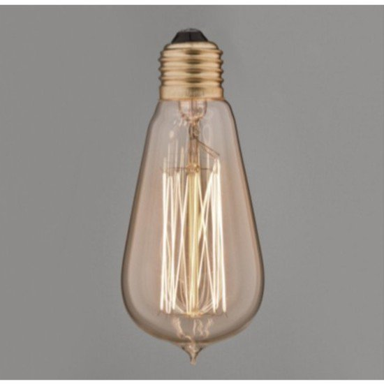 Vintage pear squirrel cage filament bulb