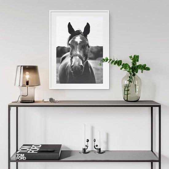 Posing horse   wall art print abstract house treniq 1 1554902920192