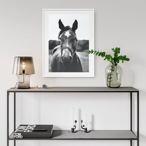 Posing-Horse-Wall-Art-Print_Abstract-House_Treniq_0