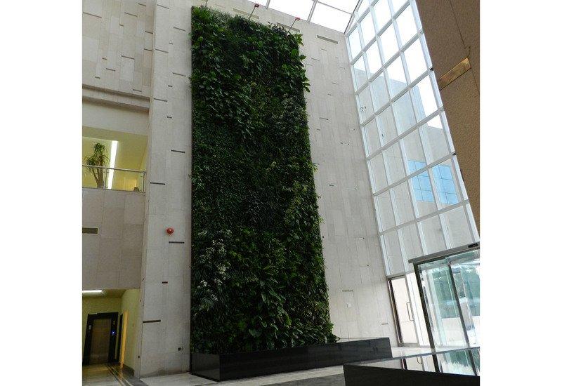 Indoor vertical gardens big realizations panel sundar italia treniq 1