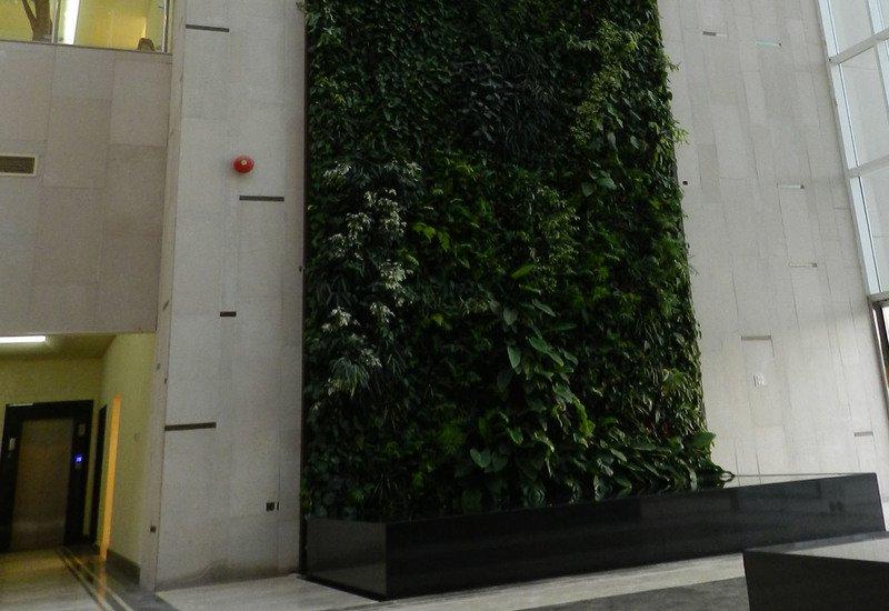 Indoor vertical gardens big realizations panel sundar italia treniq 4