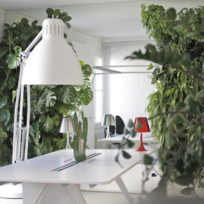 Indoor-Vertical-Gardens-For-Offices-Panel-I_Treniq
