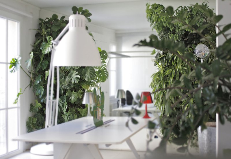 Indoor vertical gardens for offices panel i sundar italia treniq 2