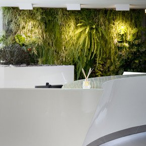Indoor-Vertical-Gardens-For-Offices-Panel-II_Treniq