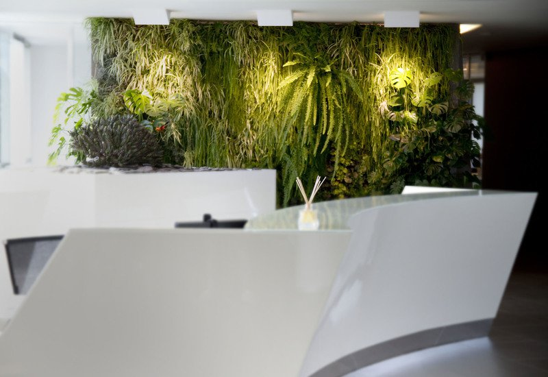 Indoor vertical gardens for offices panel ii sundar italia treniq 2
