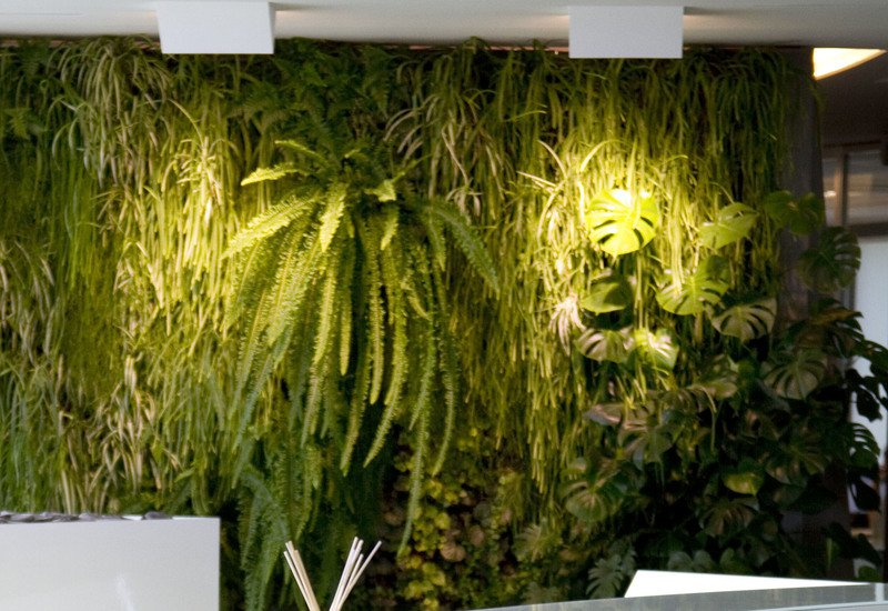 Indoor vertical gardens for offices panel ii sundar italia treniq 4