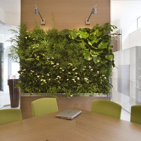 Indoor-Vertical-Gardens-For-Offices-Panel-III_Treniq