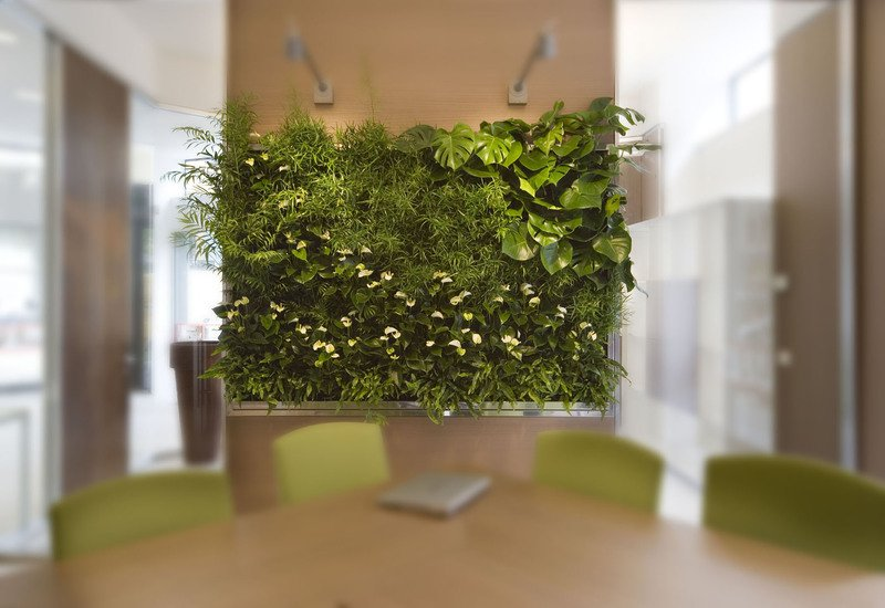 Indoor vertical gardens for offices panel iii sundar italia treniq 2