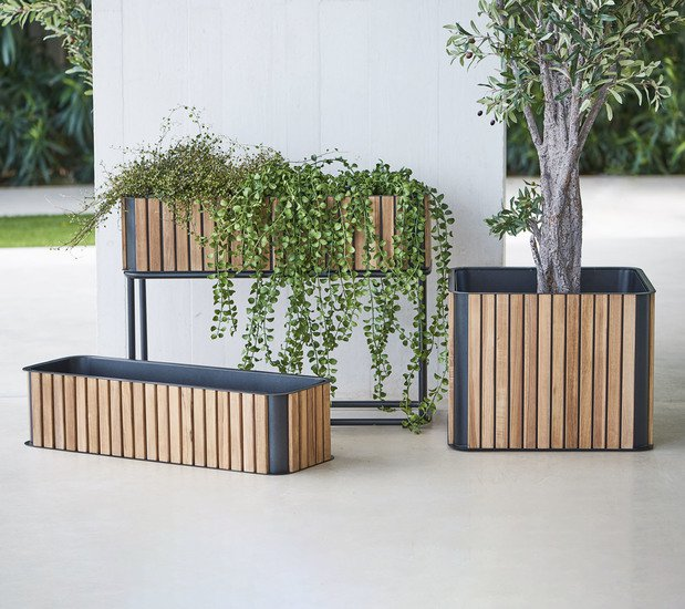 Combine plant box cane line treniq 1 1565696790308