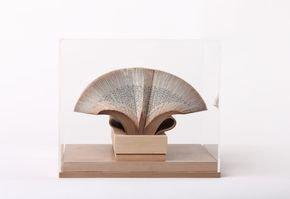 Wig Diamod -  Book Sculpture in Acrylic Box
