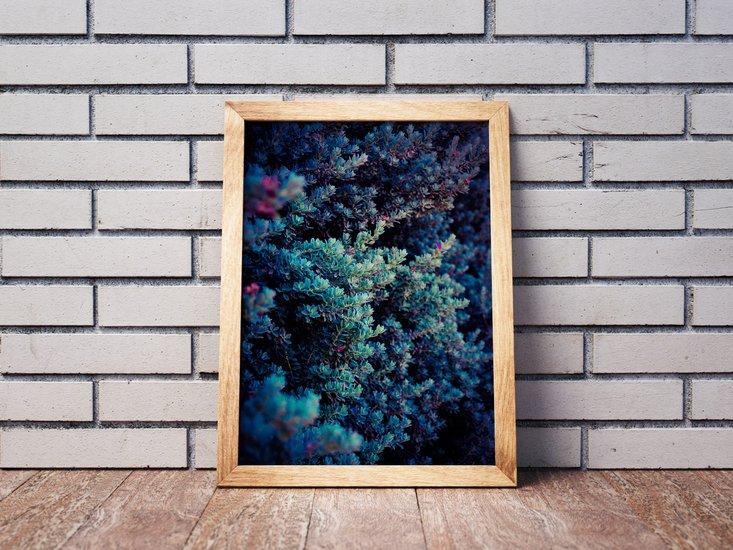 Spring   limited edition fine art print 1 of 10 tal paz fridman treniq 3 1580221871865