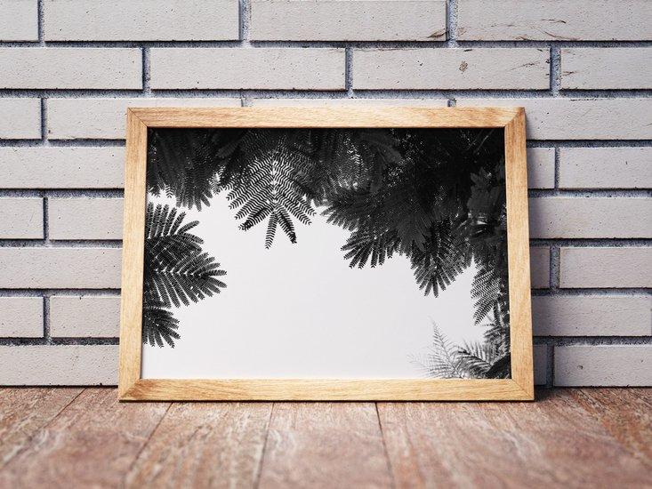The tree top ii   limited edition fine art print 2 of 10 tal paz fridman treniq 1 1580222616335