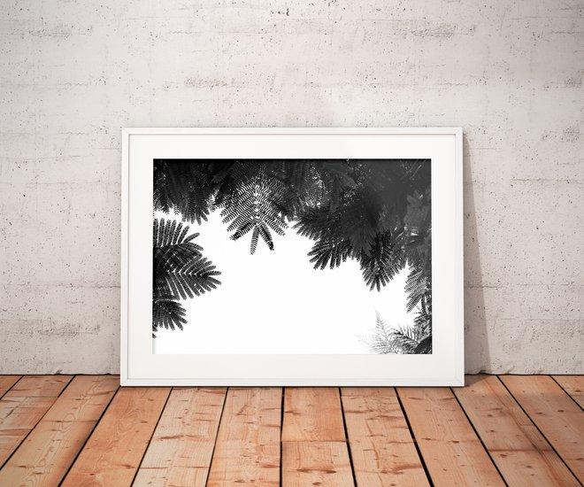 The tree top ii   limited edition fine art print 2 of 10 tal paz fridman treniq 1 1580222616333