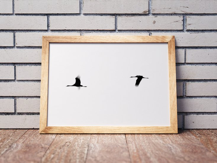 Crane(s) ii   limited edition fine art print 1 of 10 tal paz fridman treniq 1 1581521651868