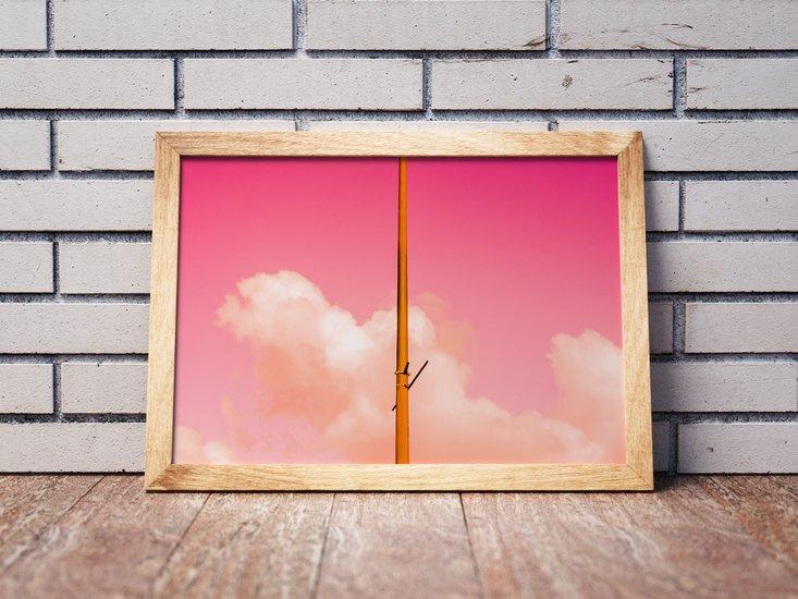 The pink half   limited edition fine art print 1 of 10 tal paz fridman treniq 1 1581523017230