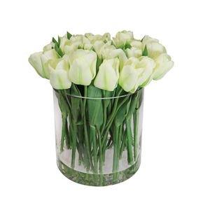 Massed Tulips