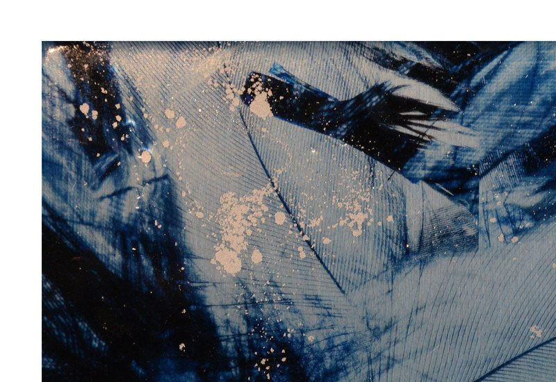 Blue bird panel studio 198 treniq 3