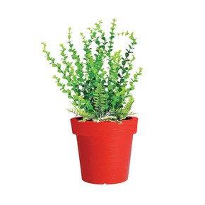 Eloisa Color Planters - Sereno - Treniq