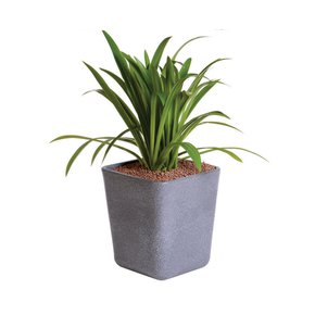 Sereno Bello Planters Rounded Rectangle Long - Sereno - Treniq