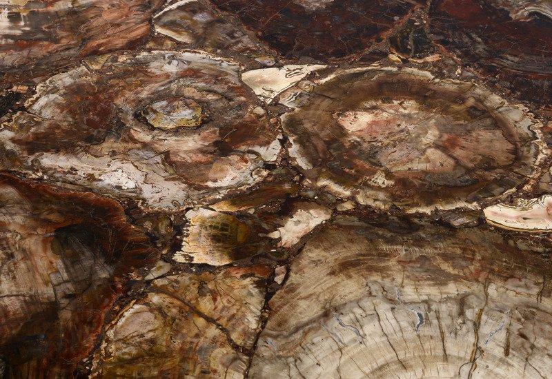 Fossil wood table hurley treniq 4