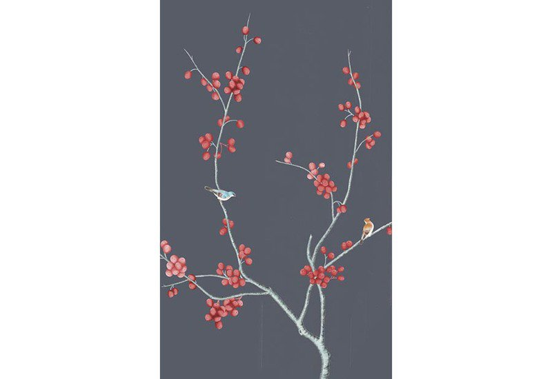 Fruits wallpaper david qian treniq 1
