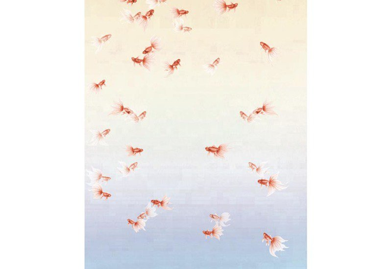 Golden fish wallpaper david qian treniq 3