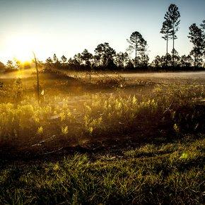 Glow-Photograph_Eric-Christopher-Jackson_Treniq_0
