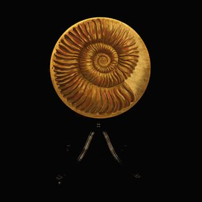 Ammonite-Round-Table_Kensa-Designs_Treniq_0
