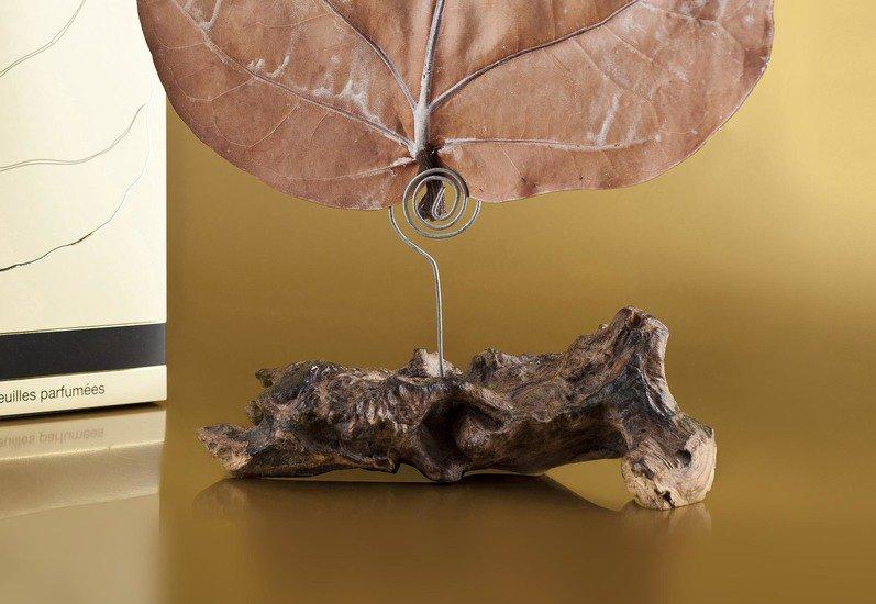Canopy infuser pairfum (by inovair ltd) treniq 1 1490871364364