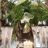 Peacock crystal champagne flute gift set   clear rachel bates interiors ltd treniq 1 1491409545582