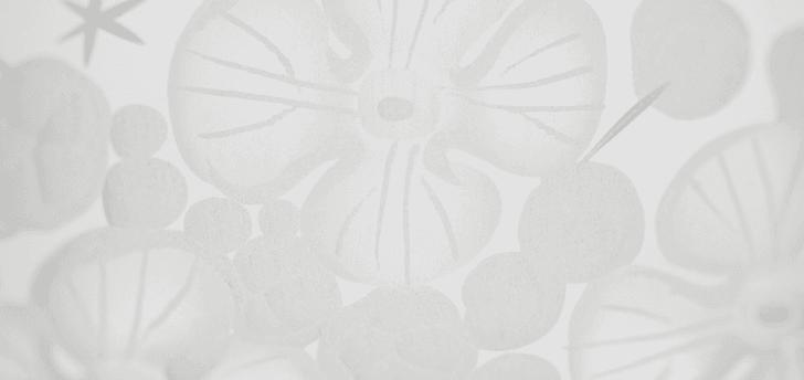 Isadora crystal champagne saucer   clear rachel bates interiors ltd treniq 1 1491837829060