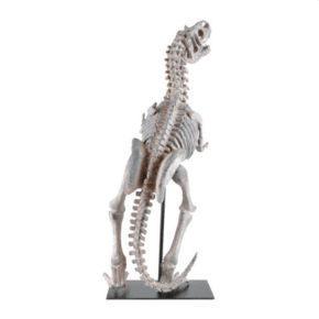 Standing-Raptor_5mm-Design_Treniq_0